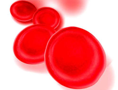 Արյան հեմոգլոբին